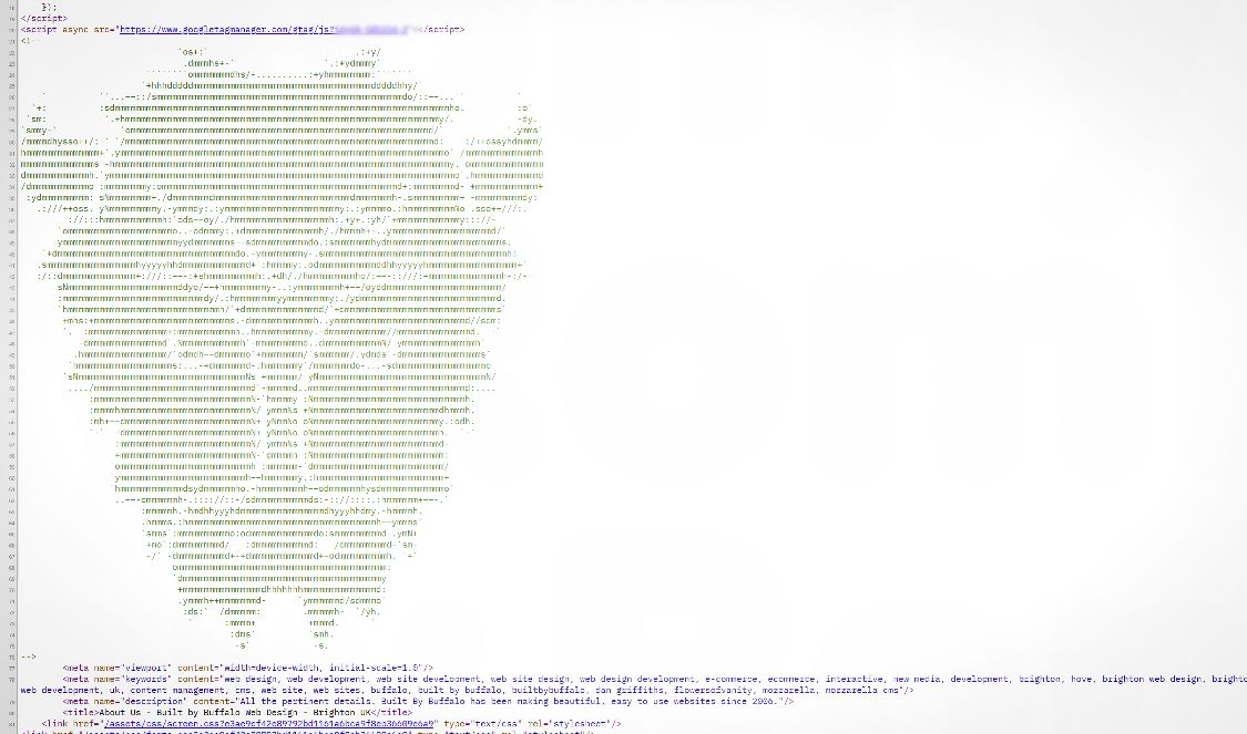 Buffalo ascii art in Buffalo Web Design HTML code