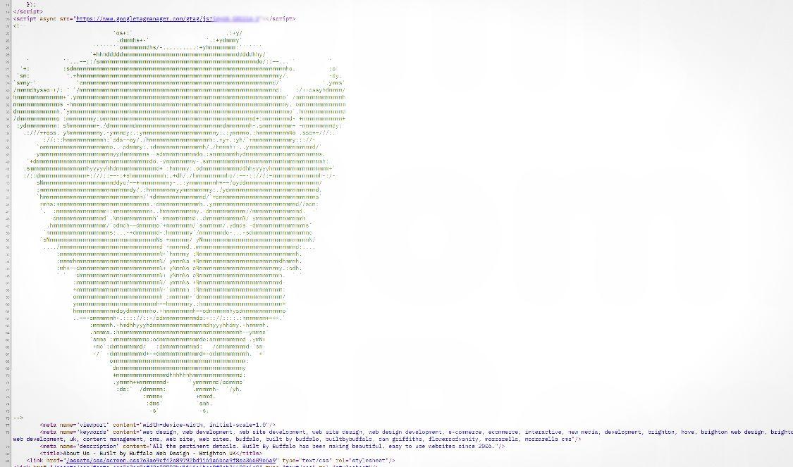 Buffalo ascii art in Buffalo Web Design HTML code